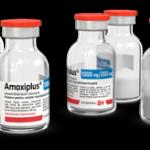Antibiotice Iași: Unul dintre cele mai utilizate antibiotice în pandemie a câștigat licitația organizată de Comisia Europeană