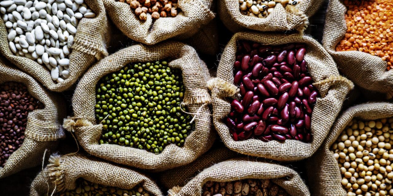 O dietă bogată în alimente care conțin izoflavonă poate proteja împotriva sclerozei multiple