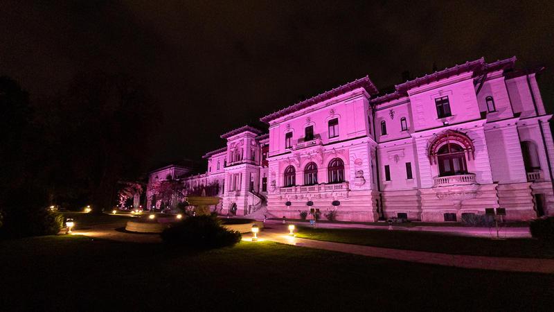 Palatul Cotroceni va fi iluminat în roz, vineri, de Ziua Internaţională a luptei împotriva cancerului de sân